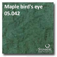 Maple bird's eye 05.042