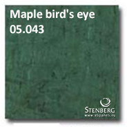 Maple bird's eye 05.043