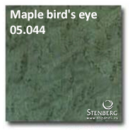 Maple bird's eye 05.044