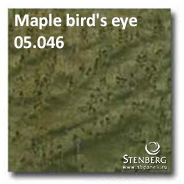 Maple bird's eye 05.046