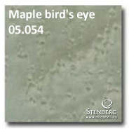 Maple bird's eye 05.054