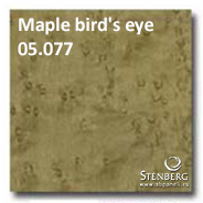 Maple bird's eye 05.077