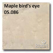 Maple bird's eye 05.086