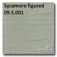 Sycamore figured 09.S.001