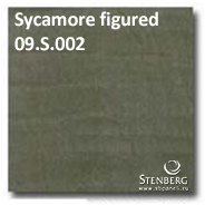Sycamore figured 09.S.002