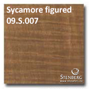 Sycamore figured 09.S.007