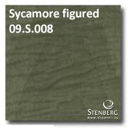 Sycamore figured 09.S.008