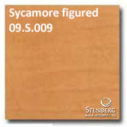 Sycamore figured 09.S.009