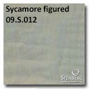 Sycamore figured 09.S.012