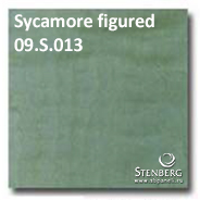 Sycamore figured 09.S.013