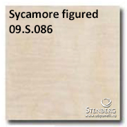 Sycamore figured 09.S.086