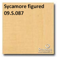 Sycamore figured 09.S.087