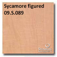 Sycamore figured 09.S.089
