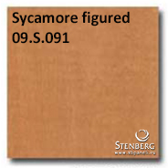 Sycamore figured 09.S.091