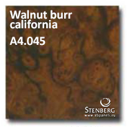 Walnut burr california A4.045
